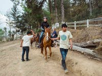 Exploring Guatemala by horseback with IVHQ