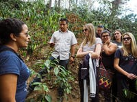 IVHQ Guatemala Coffee Tour