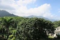 View from IVHQ Hawaii volunteer house
