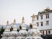 Volunteers visit Chokling Monastery in Dharamsala, India