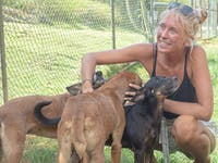 Animal Care volunteer in Jamaica with IVHQ