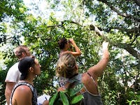 Forest Conservation volunteers in Madagascar with IVHQ