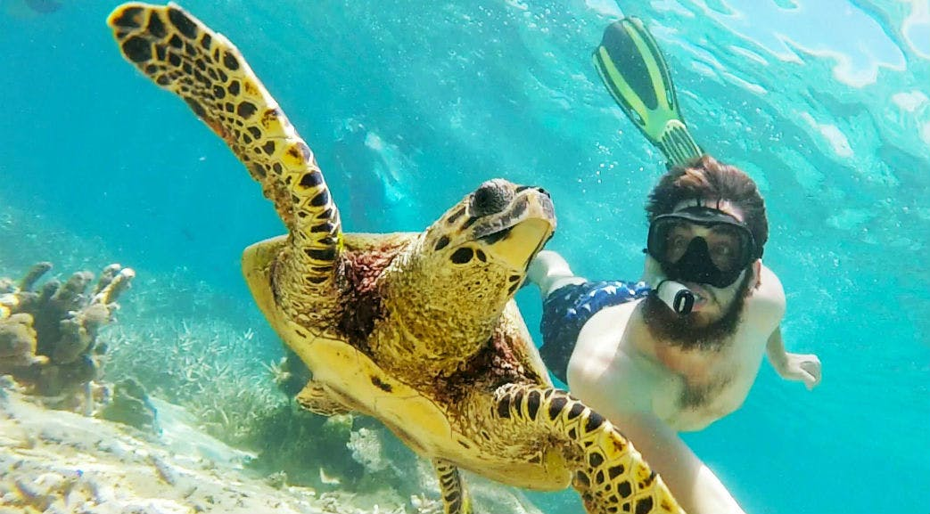 Marine Conservation in Madagascar
