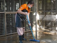 IVHQ volunteers cleaning enclosures on the Orangutan Conservation project in Malaysia
