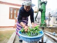 Chitwan Nepal volunteer host