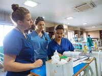 IVHQ Medical Elective volunteers in Nepal with IVHQ