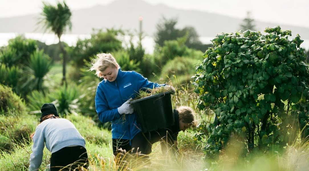 Volunteer in New Zealand Freshwater Restoration Project