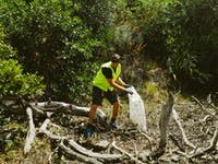 New Zealand Coast and Waterway Conservation volunteer project