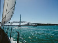 Exploring Auckland, New Zealand by boat during an IVHQ weekend