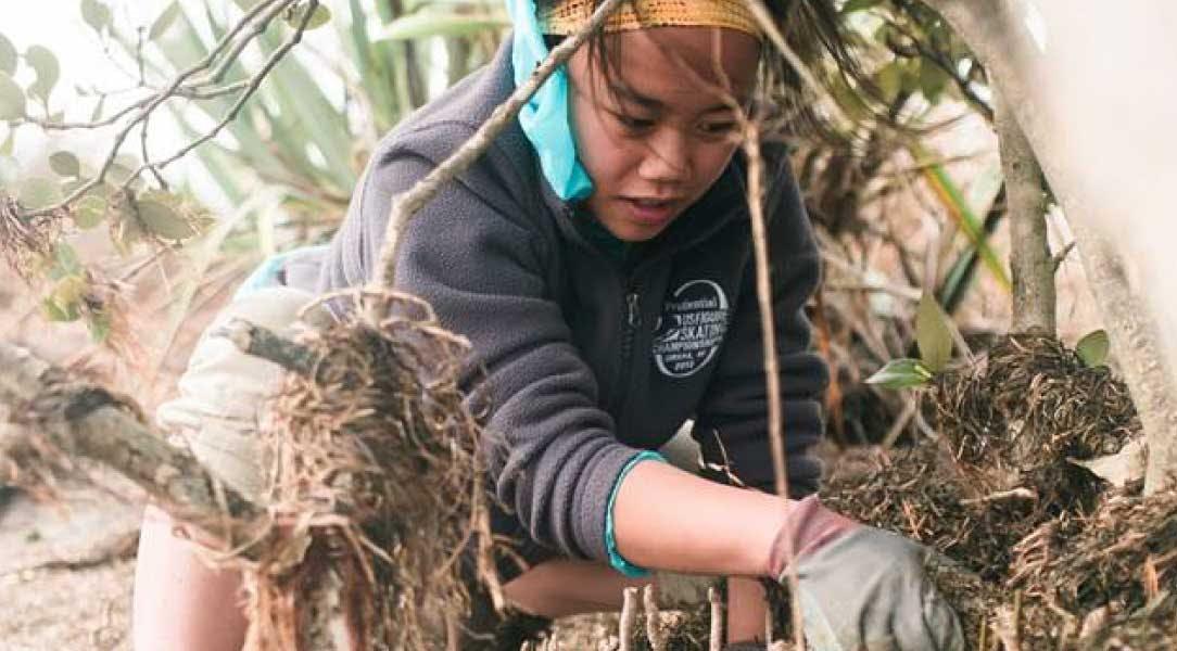 IVHQ Volunteer in New Zealand Coastal Clean Up