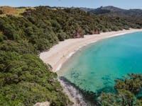 Overlooking a beach in Coromandel, New Zealand during an IVHQ weekend
