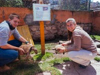 IVHQ volunteers on Animal Care project in Cusco