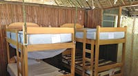 Volunteer accommodation on the Jungle Conservation project