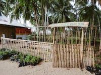 IVHQ volunteer vegetable garden in the Philippines