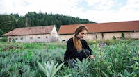 Agriculture volunteer in Romania with IVHQ