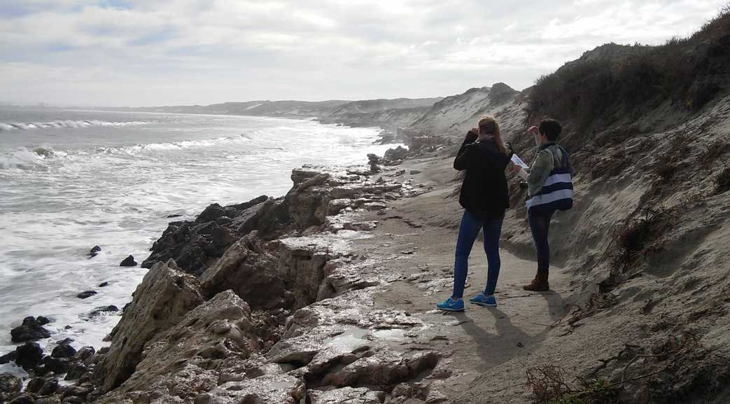 Volunteer in South Africa coastal conservation