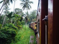 Riding the train with IVHQ in Sri Lanka