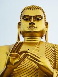 Explore the area around Sigiriya with IVHQ in Sri Lanka