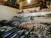 Kandy Fish Markets with IVHQ in Sri Lanka