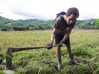 Outdoor work volunteer in Thailand with IVHQ