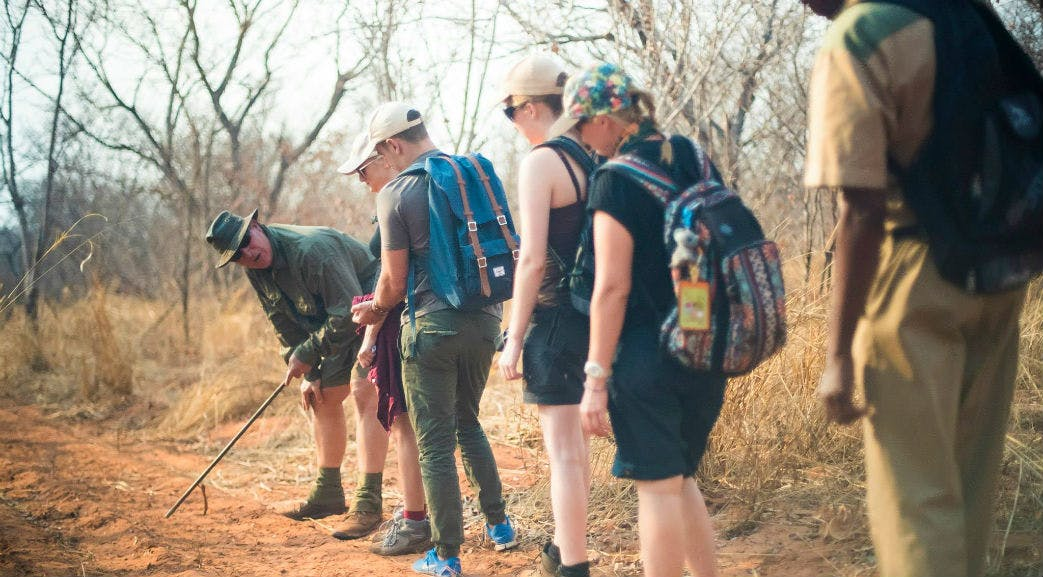 Learning about animal tracks in Victoria Falls
