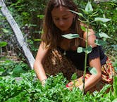 Affordable Conservation Volunteer Abroad Projects