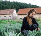 Volunteer Abroad Programs - Volunteer in Romania