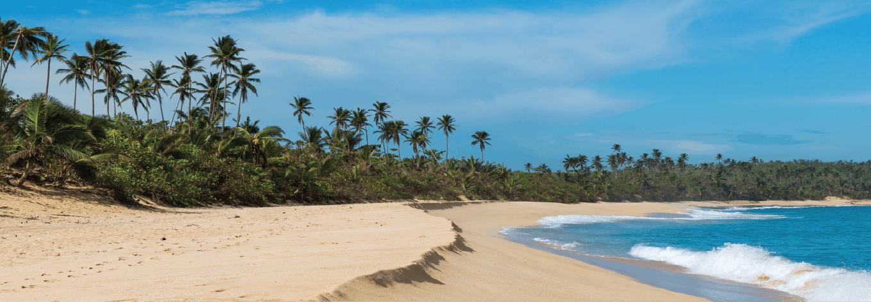 Volunteer in Puerto Rico | IVHQ | #1 Rated Programs 2020/2021