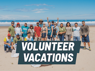 The best volunteer vacations abroad