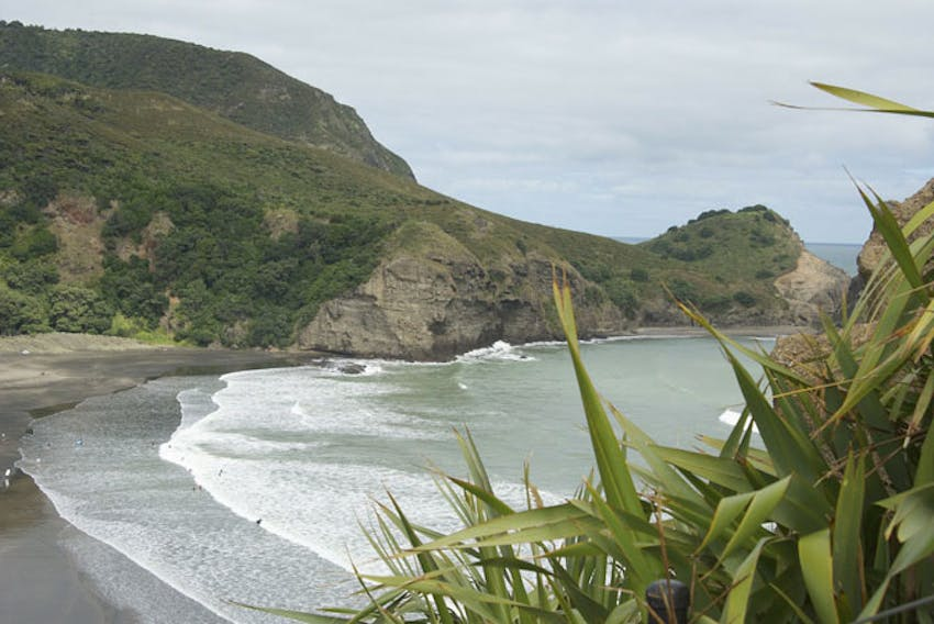 Visit Piha Beach in New Zealand with IVHQ