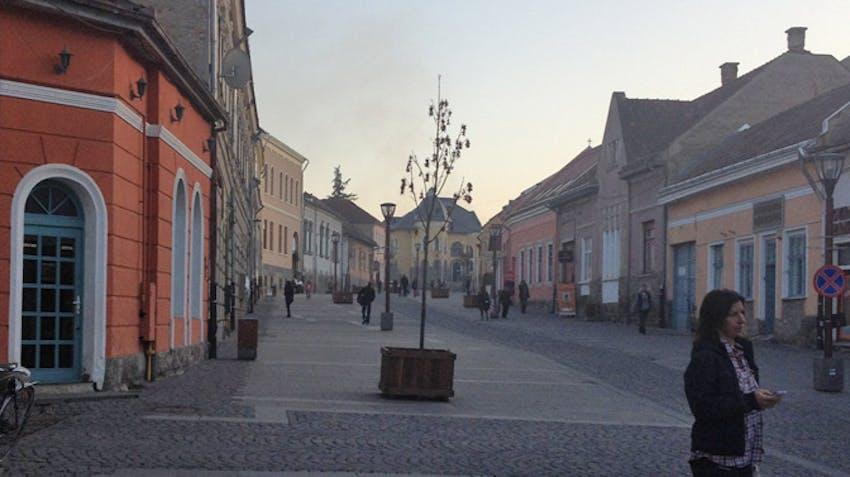 Volunteer tour opportunities Brasov