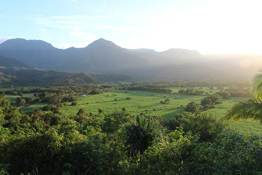 Visit Kauai as a volunteer in Hawaii with IVHQ