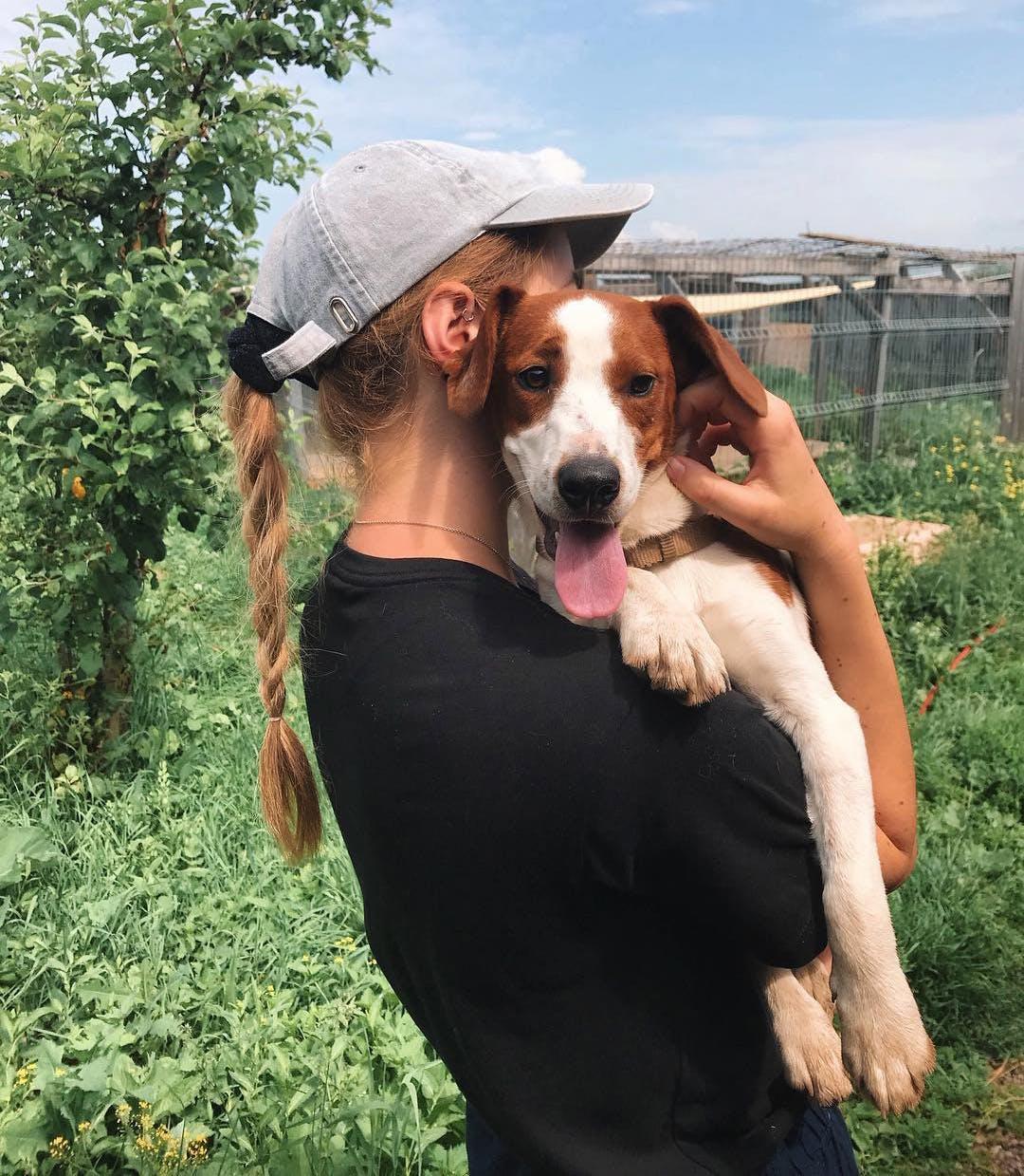 Wildlife & Animal Care Volunteer Abroad Programs