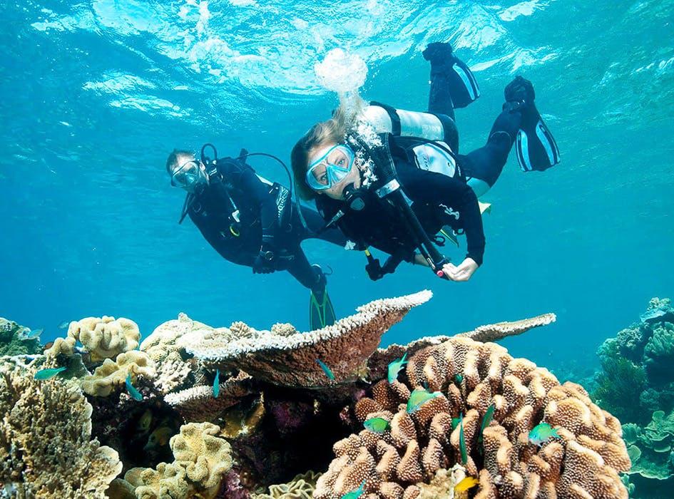 Marine Conservation Volunteer Program in Belize