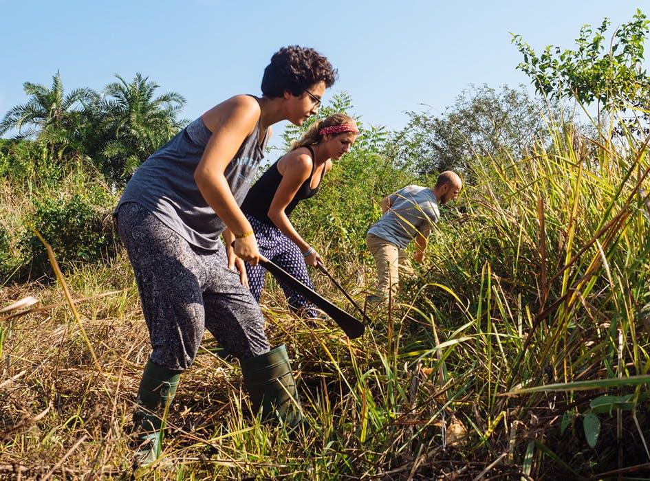 Agriculture Volunteer Program in Ghana - Accra Region