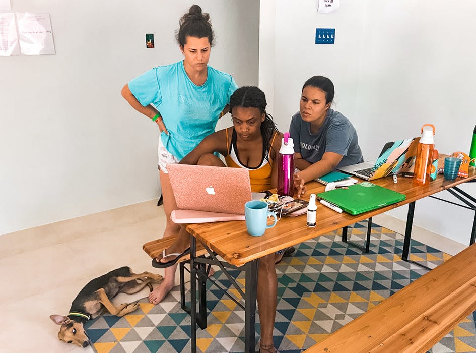 Business and Community Development Volunteering in Jamaica - St Mary