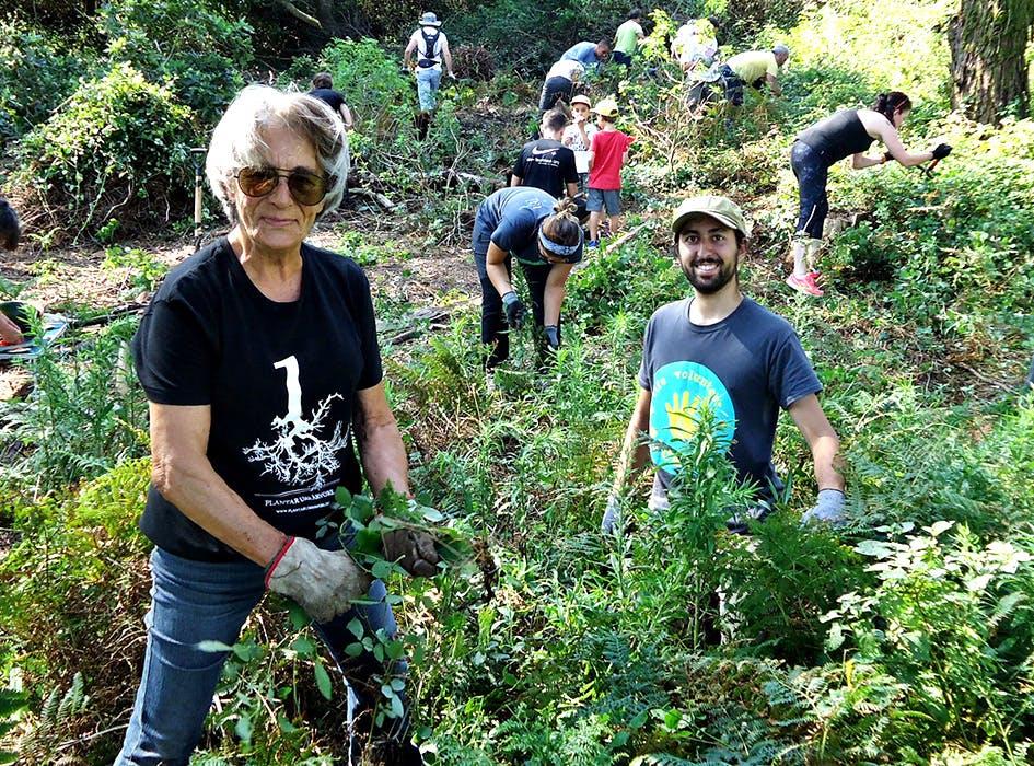 Forest Conservation Volunteer Project in Portugal - Lisbon