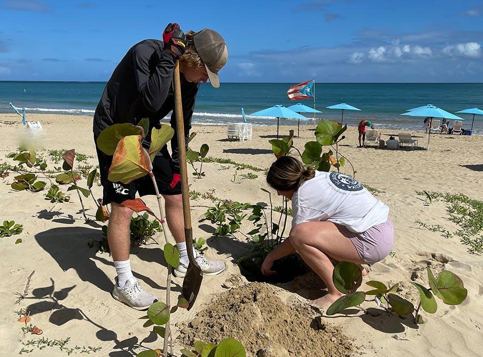 Environmental Sustainability Volunteer Project in Puerto Rico - San Juan