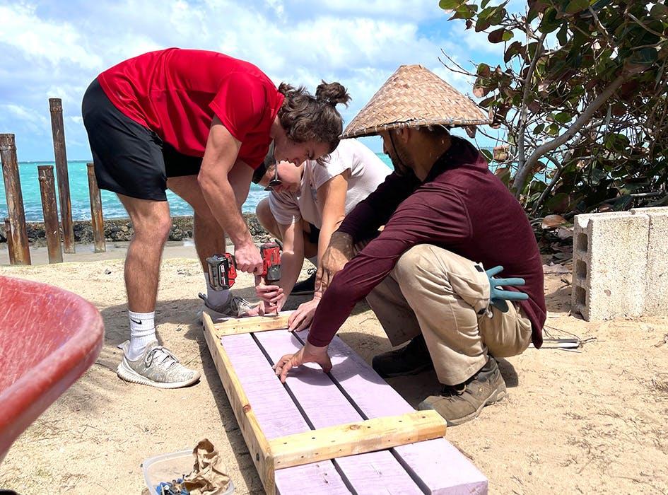 NGO Support Volunteer Project in Puerto Rico - San Juan