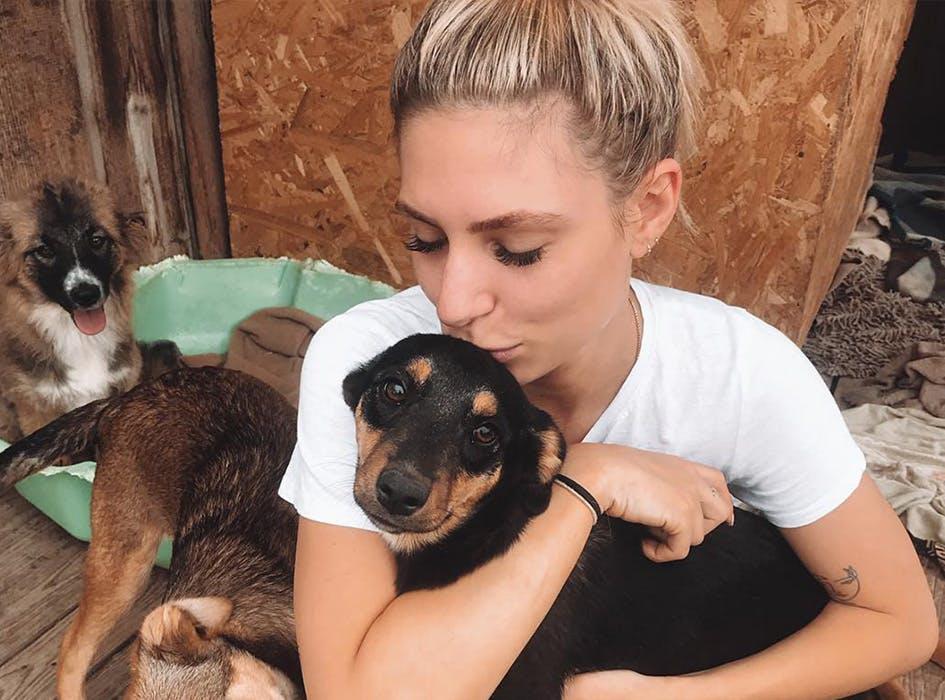 Animal Care Volunteer Project in Romania - Miercurea Ciuc