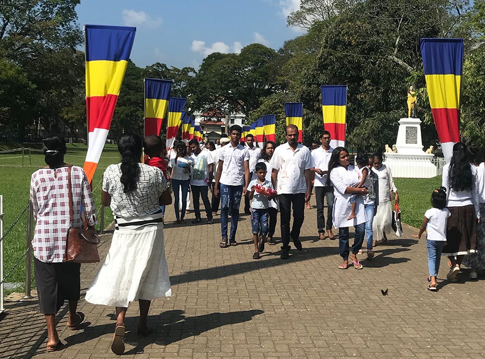 Cultural Immersion Volunteer Project in Sri Lanka