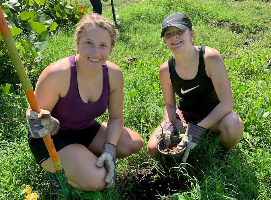 Environmental Sustainability Volunteer Project in the USA - Chicago